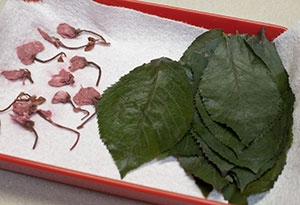 Preserved sakura leaves and blossoms