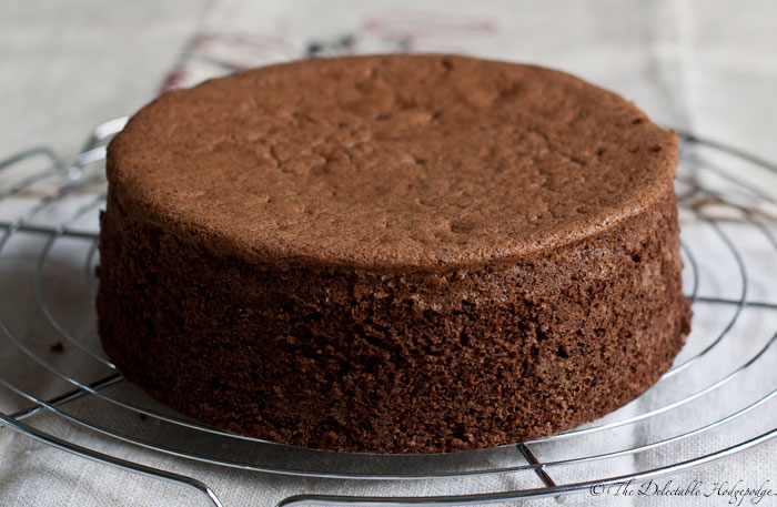 Sponge cake genoise chocolat recipe the delectable for Chocolate sponge ingredients