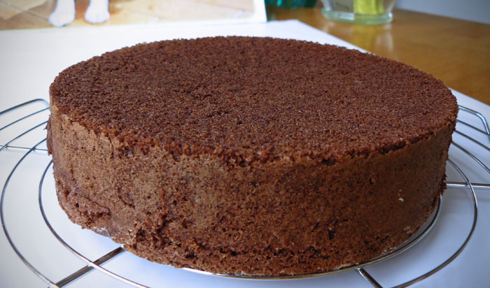 Moist Chocolate Sponge Cake Recipe #1